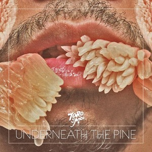 toro-y-moi-underneath-the-pine